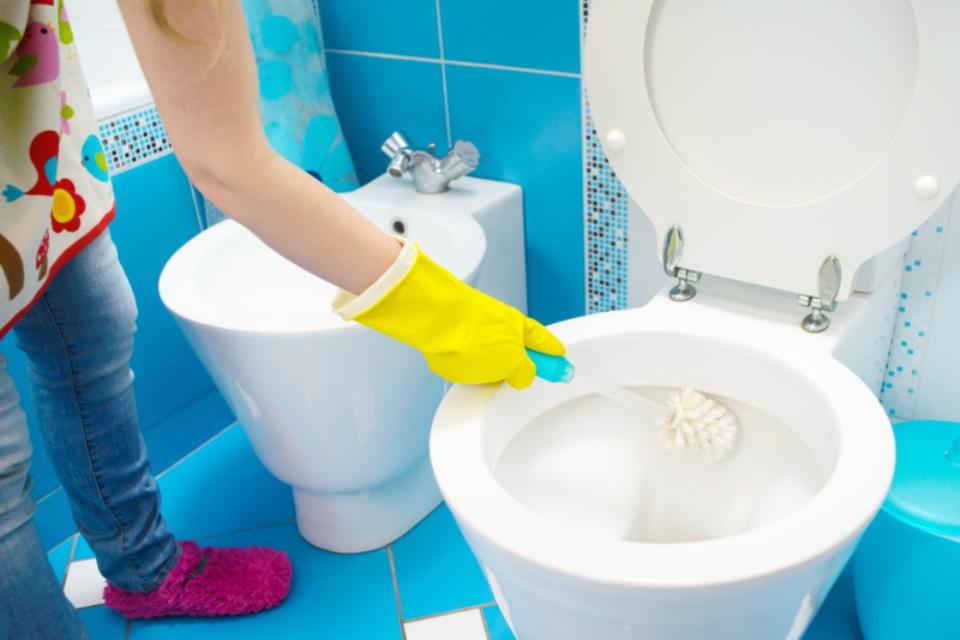 Απολύμανση-τουαλέτας